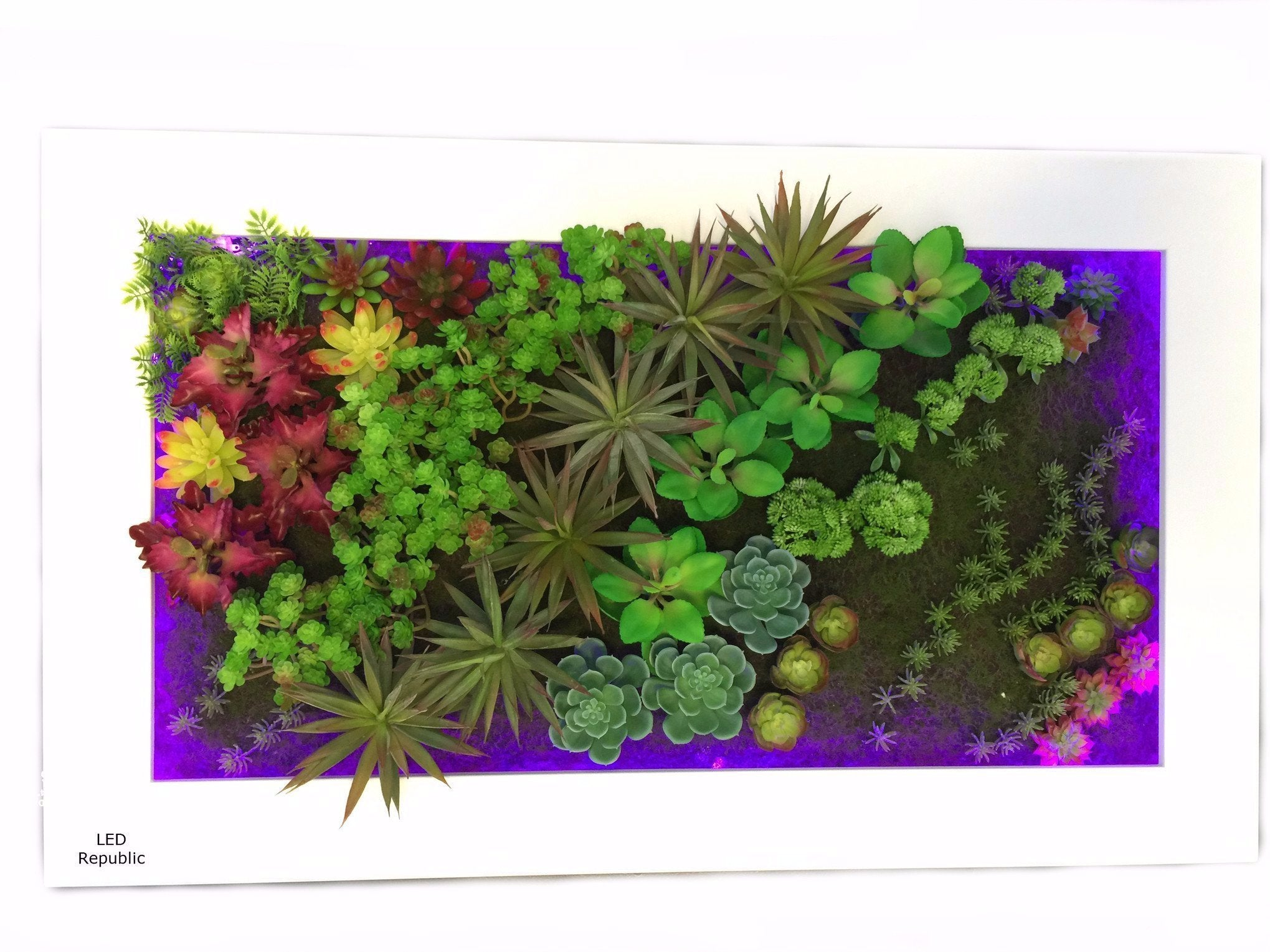 HISUN LED 3D Artificial Plant Simulation Flower Frame Wall Decor Home Garden Wall Hanging Flower