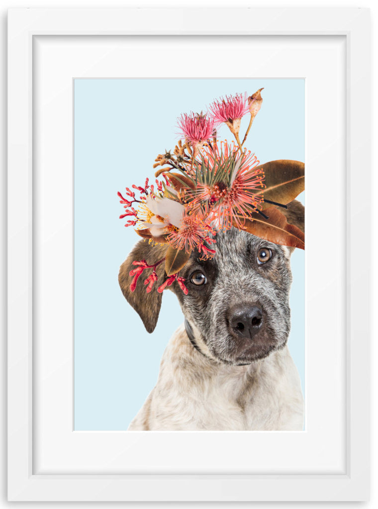 Native Florals & Australian Cattle Dog Puppy
