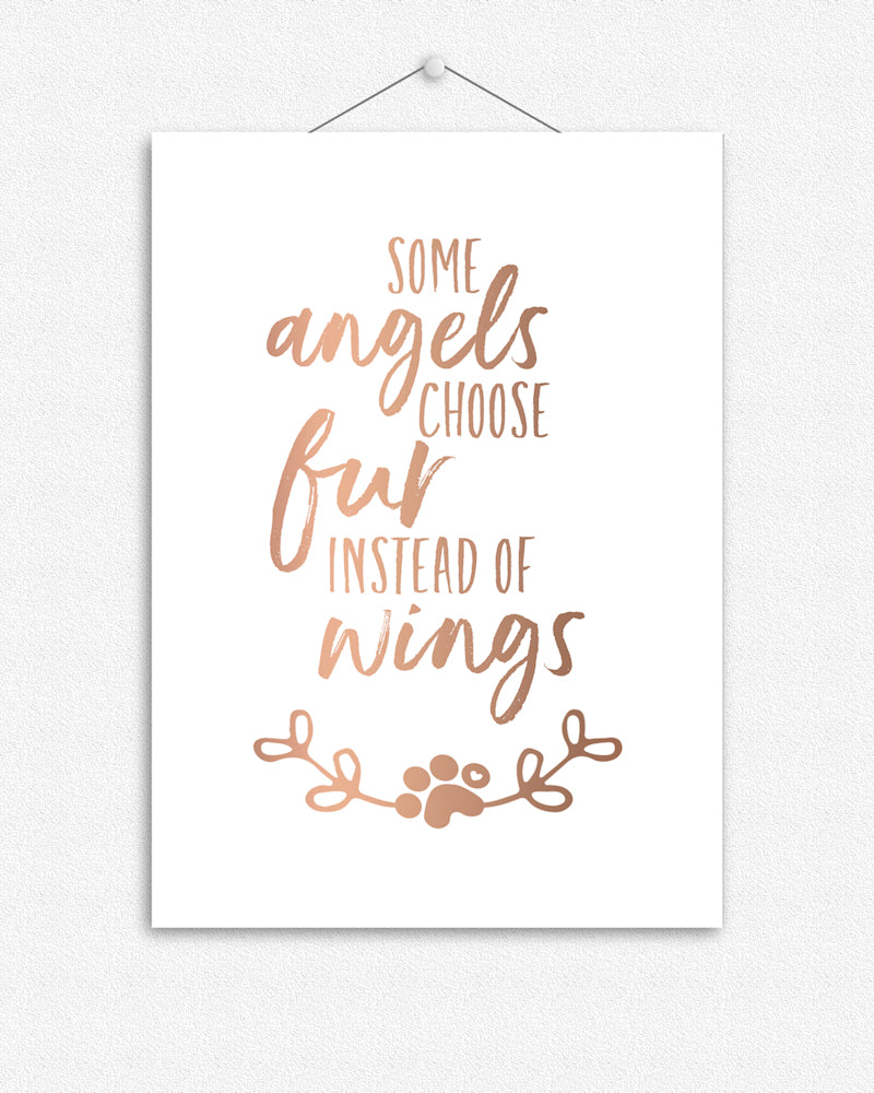 Some angels choose fur instead of wings | Foil Print