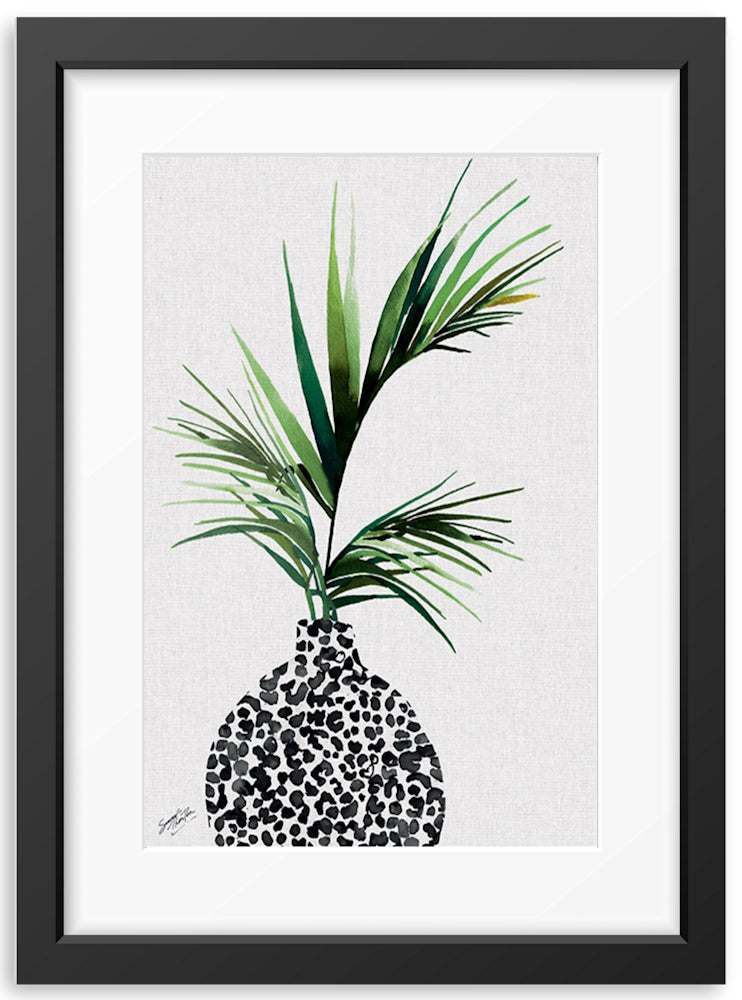 Summer Thornton | Areca Palm Plant