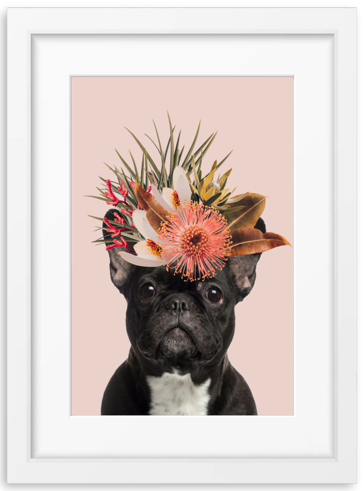 Floral French Bulldog
