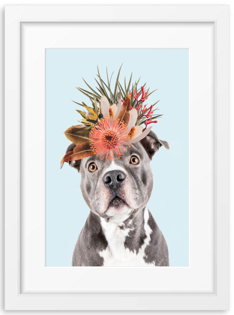 Native Florals & Blue Staffordshire Bull Terrier
