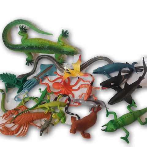 Assorted Sea Creatures and Reptiles
