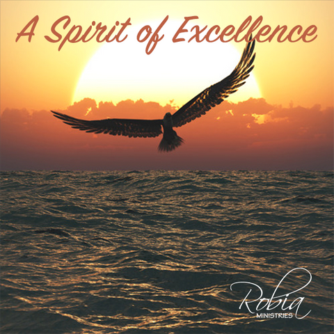 A Spirit of Excellence (MP3 Only)