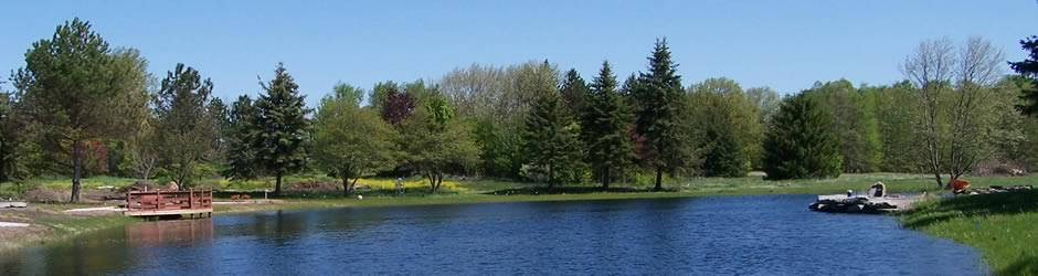 Vast sport pond with beautiful woods.