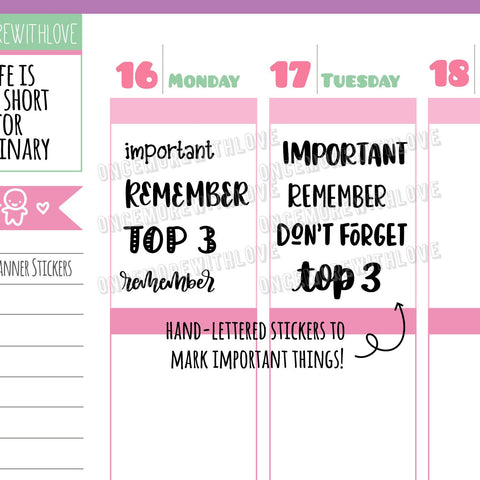 Hand-Lettered - Important, Top 3, Remember, Don't Forget Variety Planner Stickers (V128)