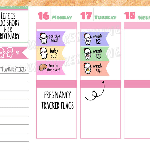 M76 - Pregnancy Tracker Weekly Countdown Flags with Fruits Munchkin Planner Stickers