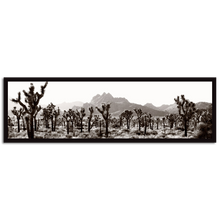Load image into Gallery viewer, Joshua Tree National Park #1