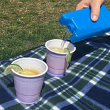 Cooler Ice Block Flask 400ml - smuggleyouralcohol.com
