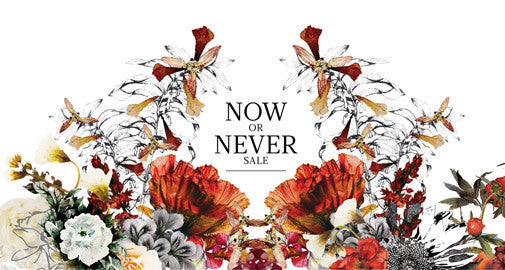 Now or Never Sale!