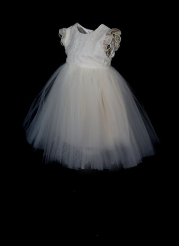 Daisy Lace and Tulle Ivory Flower Girl Dress