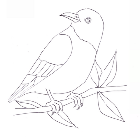 Download bird sketch for painting free