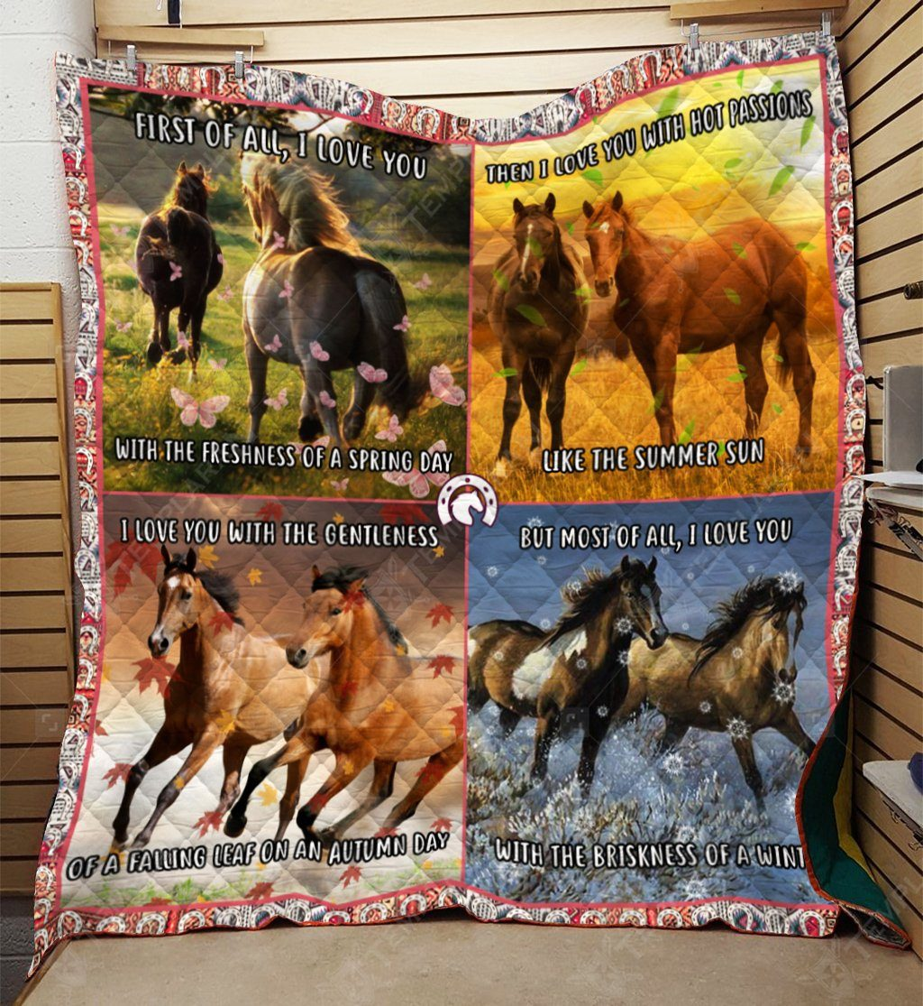 Limited Edition Blanket DQL-QDD0037