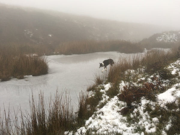 Winter Moors Walking Tips