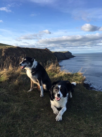 The boys enjoy the coast air