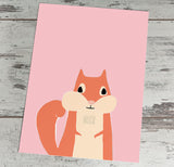 Squirrel on pink background