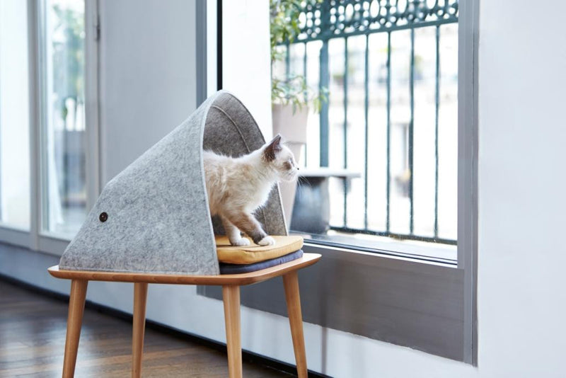 lit pour chat gris design