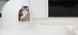 "Maison de toilette design  ""L'igloo"" pour chat Pidan"