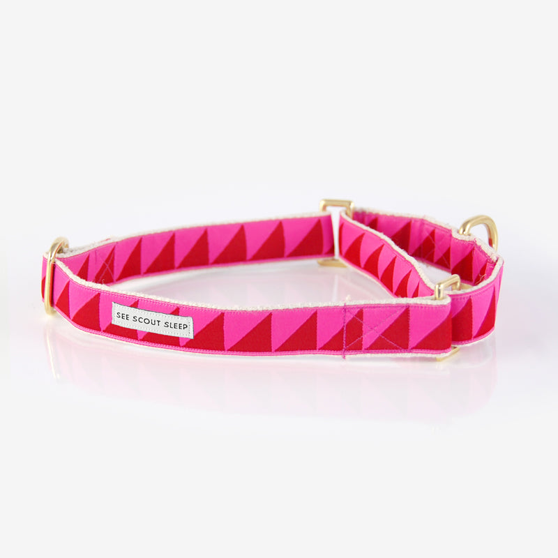 Collier pour chien Nice Grill rose et ruby