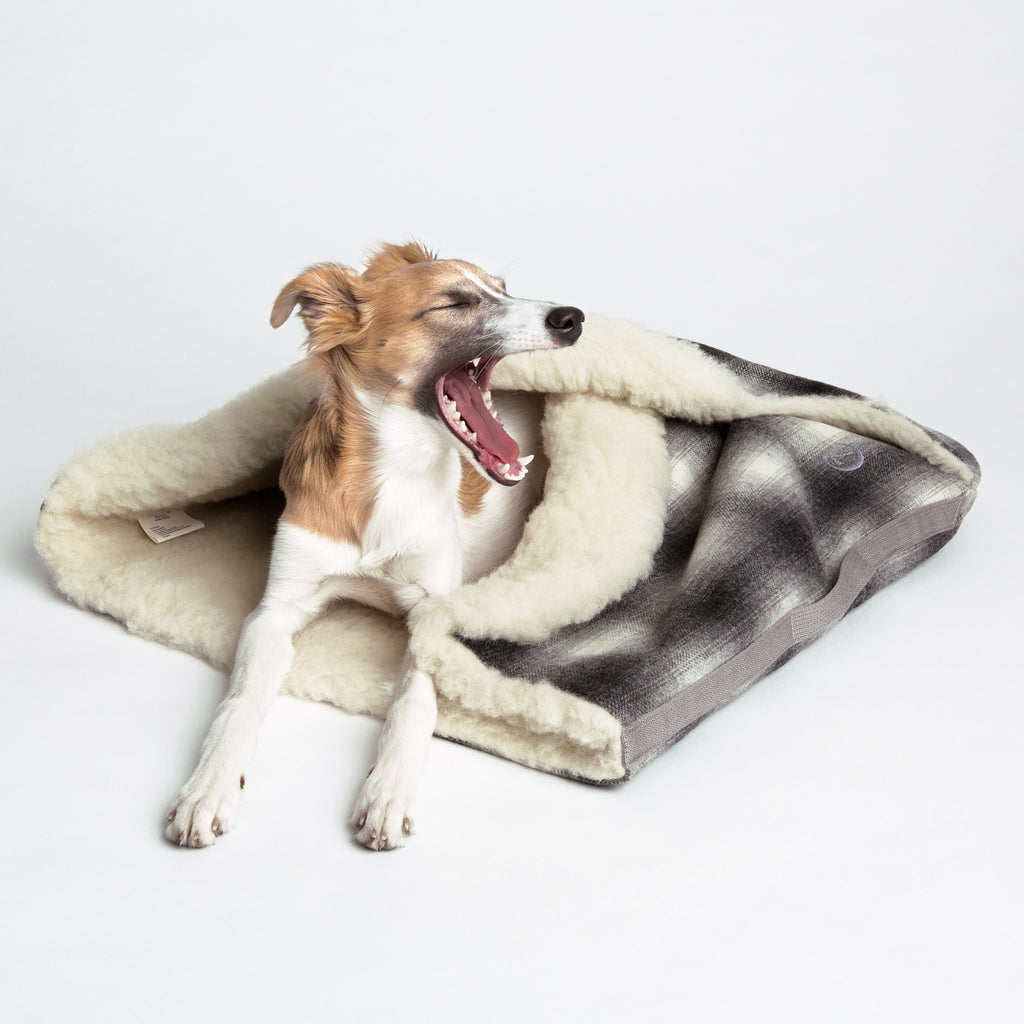 sac de couchage pour chien en laine hariet rosie. Black Bedroom Furniture Sets. Home Design Ideas