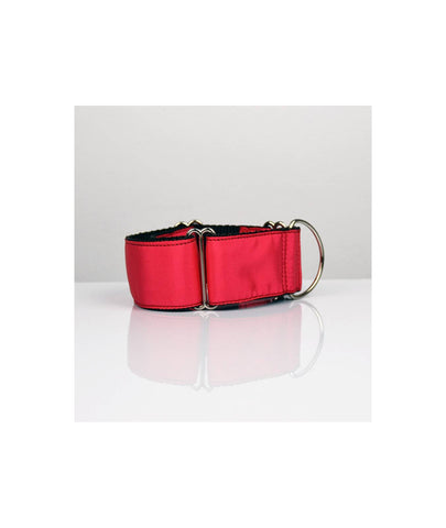 Ensemble Collier + laisse Strawberry ~ Martingale ~ Whippet