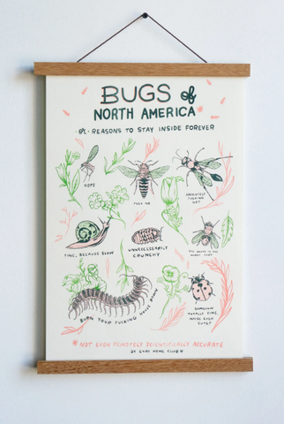 Bugs Of North America Print