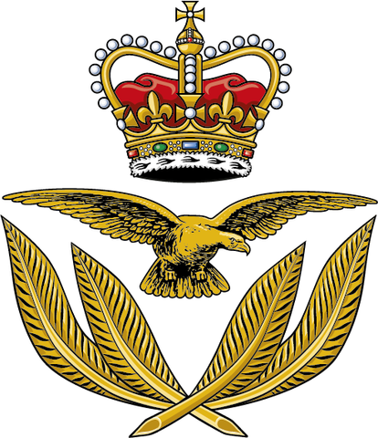 RAF WO Cap Badge