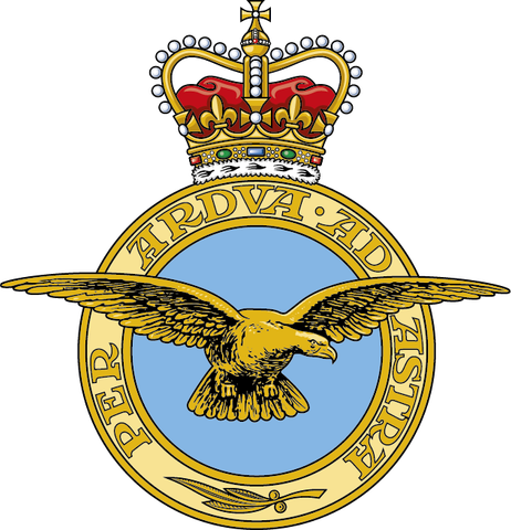 1. RAF - IF YOU CAN'T SEE YOUR SQUADRON, PLEASE ORDER FROM THIS LINK