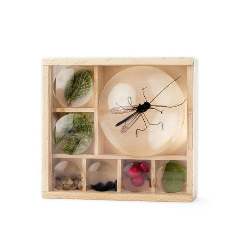 Huckleberry Bug Box DIY Kit