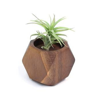Mini Geometric Wooden Planter (Set of 2)
