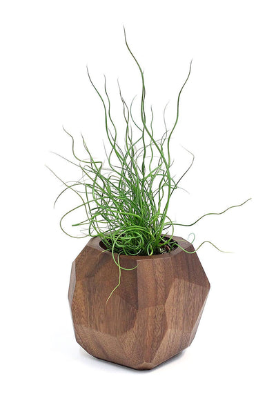 Geometric Wooden Planter Earth