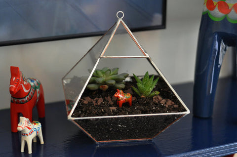 Air Terrarium Kit Pyramid Top Glass Terrarium