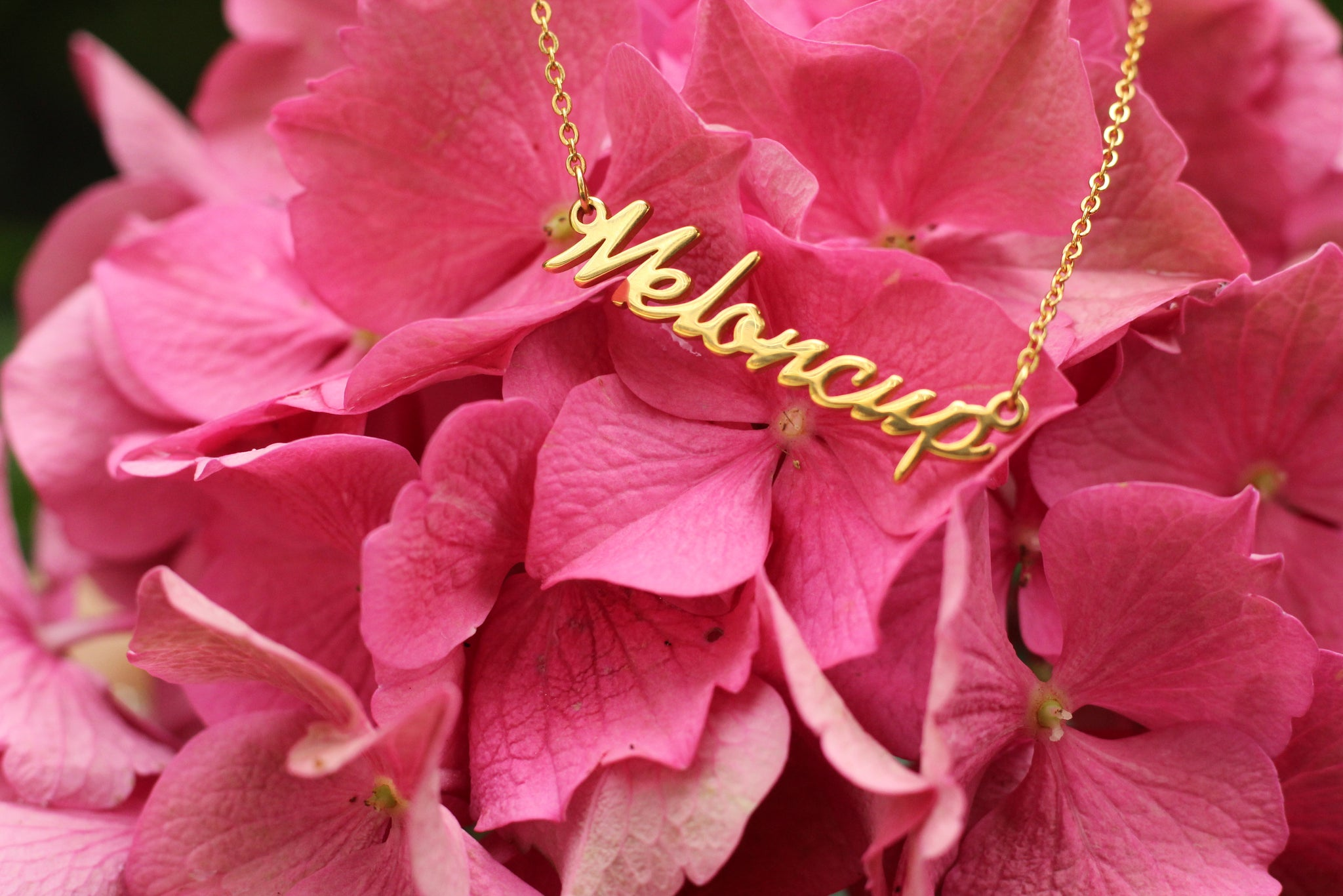 Meloncup Necklace