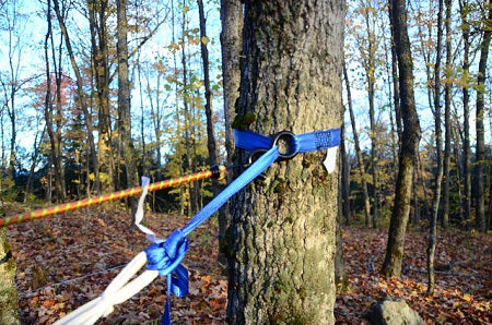you will be looping the strapping through the d rings or o rings when you are ready to tie on the hammock tree     hammock tree straps 101   little river co   rh   littleriverco
