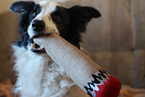 "Dooby's Dog Toy - ""Joint"""