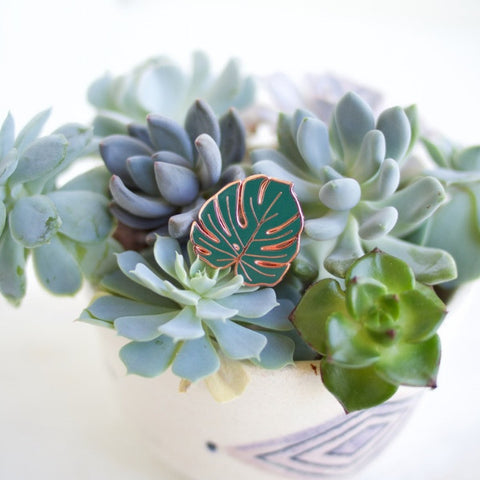 Oh No Rachio - Monstera Pin - Homecoming Goods