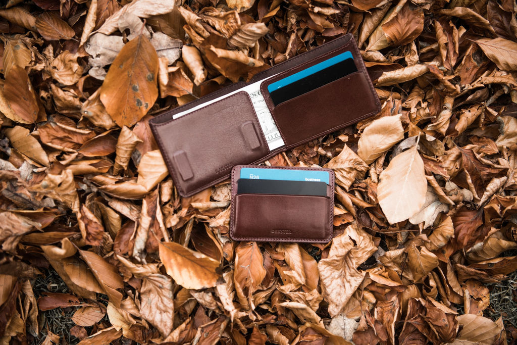 A wallet nesting in leaves