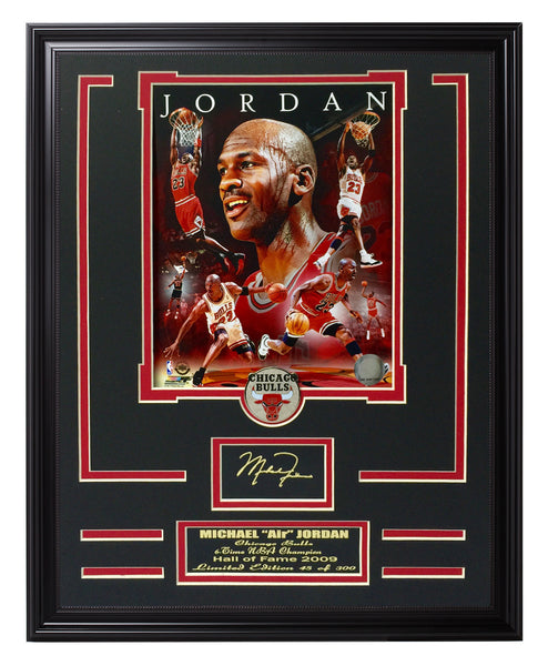 NBA Bulls-Michael Jordan Portrait Plus