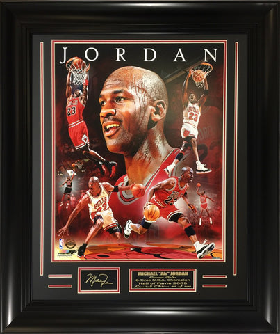 NBA Legend Michael Jordan AAND141 16x20