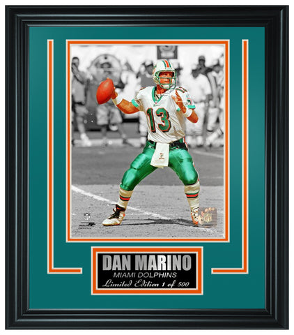 Miami Dolphins Dan Marino Limited Edition Frame FTSLV212