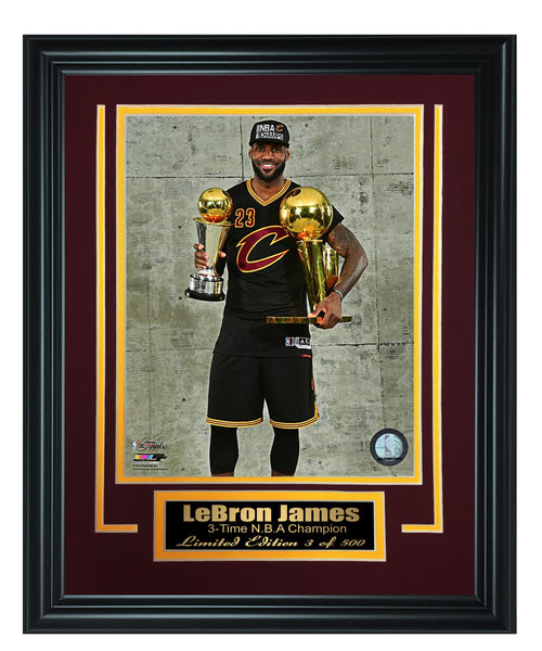 Cavaliers - LeBron James 8x10 Framed FTSTC186