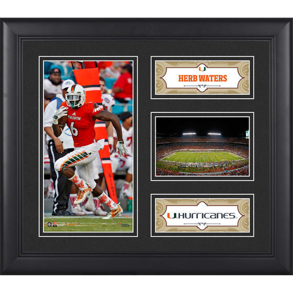 "Herb Waters Miami Hurricanes Framed 15"" x 17"" Collage"