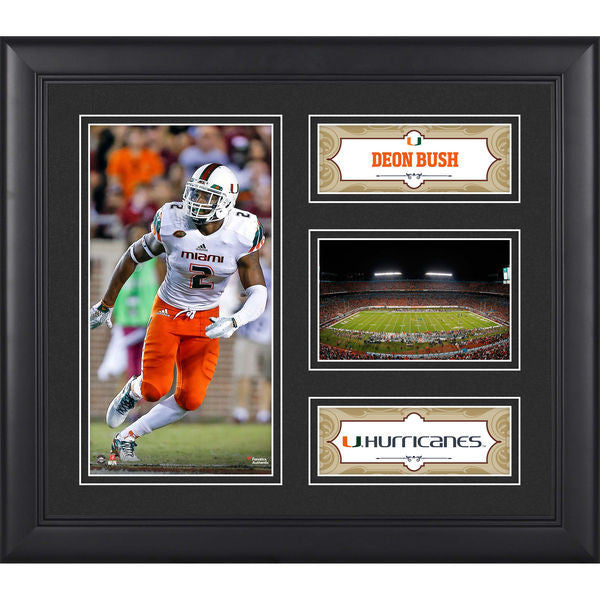 "Deon Bush Miami Hurricanes Framed 15"" x 17"" Collage"