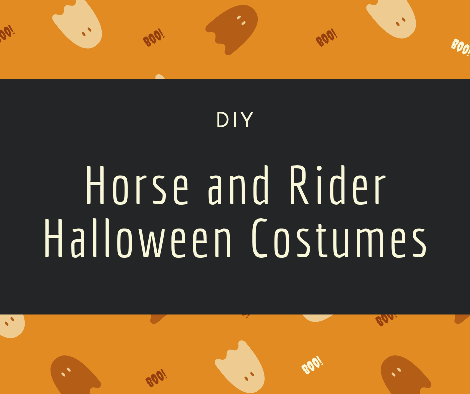 DIY Horse and Rider Costumes