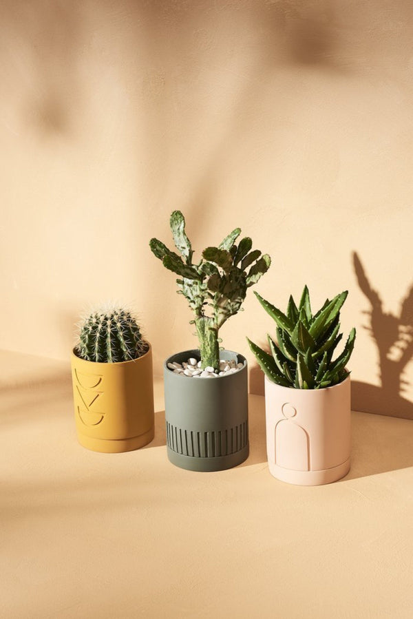 Etch Planter Collection