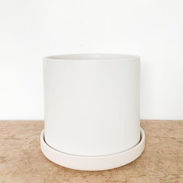 Stump Cylinder Collection in White
