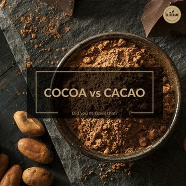 Cocoa vs. Cacao  --What's the difference?--