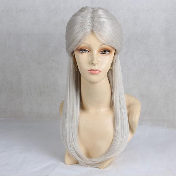 Anime Girl Long Straight Synthetic Silver Hair Cosplay Wig