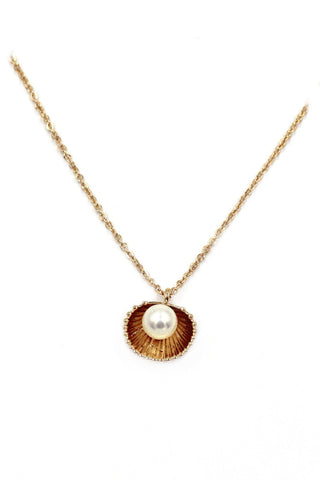 Seashell with Pearl Necklace - www.hitide808.com