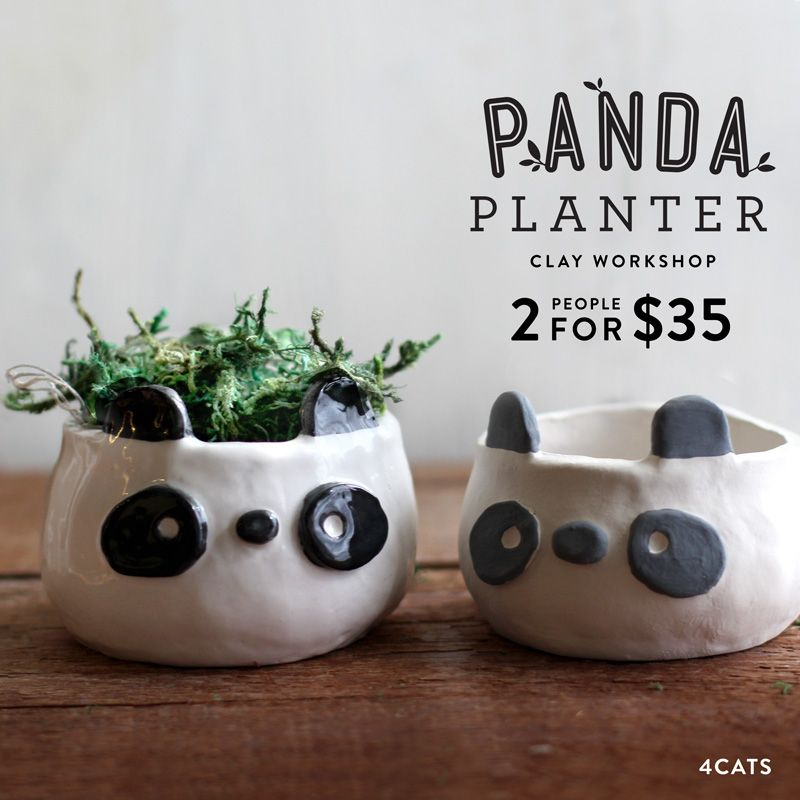Panda Planter—Family & Adult